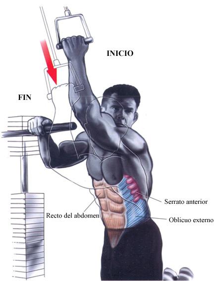 Ejercicios de abdominales – Crunch en polea alta para oblicuos | Prozis