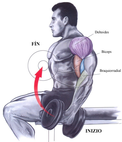 anabolicos para masa muscular