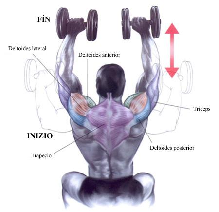 anabolicos para ganar masa muscular rapido