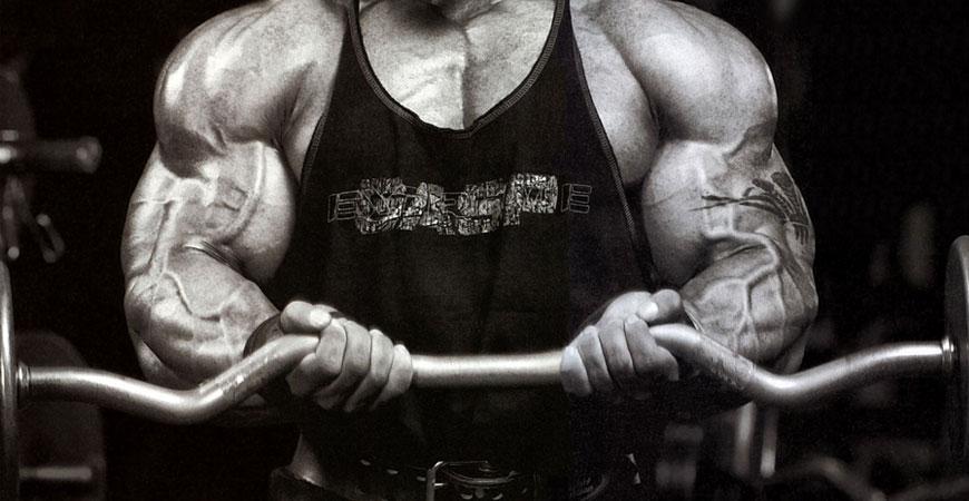 """""""Por Que Não Consigo Ganhar Massa Muscular?"""""""