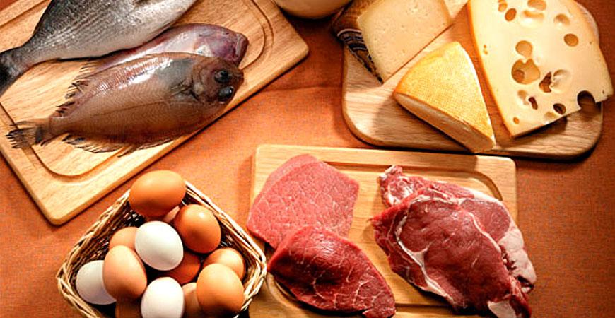 Melhores Fontes de Proteína para Ganhar Massa Muscular