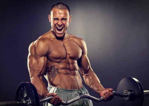 Plano de Treino Avançado para Construir Músculo e/ou Aumentar a Definição Muscular