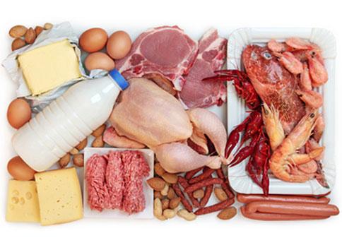 Os Alimentos mais Ricos em Proteína