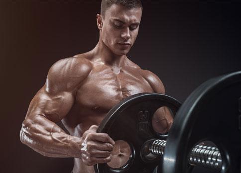 bodybuilding prozis