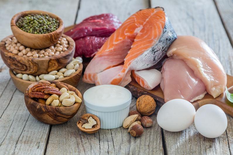 dieta altamente proteica