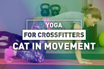 Yoga for crossfitters: Cat in movement