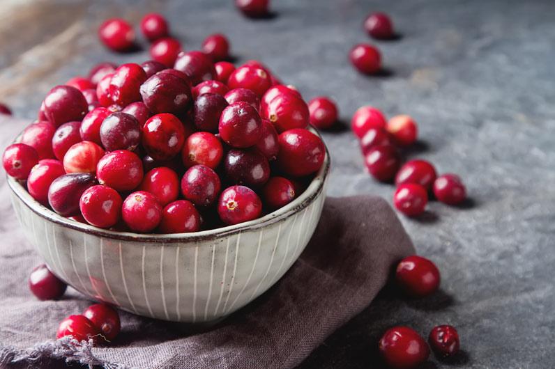 Arando vermelho: fruto silvestre com propriedades antioxidantes
