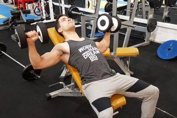 Exercícios peito: supino inclinado com halteres