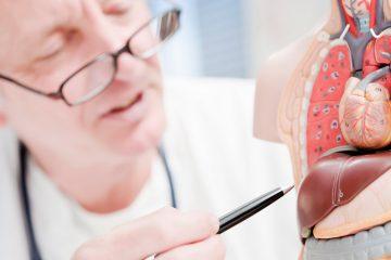 Como cuidar do fígado, o agente detox natural do nosso corpo