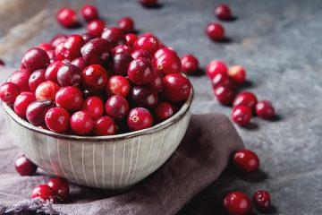 Arando vermelho: o fruto silvestre com propriedades antioxidantes