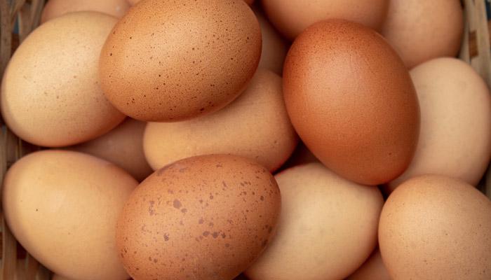 Ovos inteiros - massa muscular